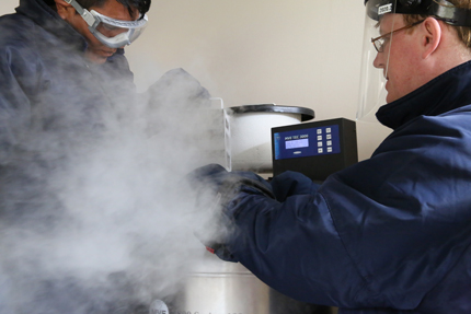 Cryoperservation