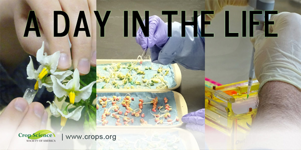 Nutritional quality | Crop Science Society of America