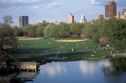 The Great Lawn in NYC Central Park