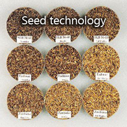 Seed technology with diverse barley seeds