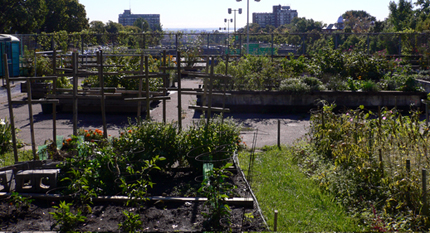 Decarie Expressway tunnel roof converted to garden