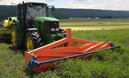 Crimper roller on organic cover crop