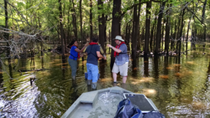 Mississippi River tributary soil sample collection