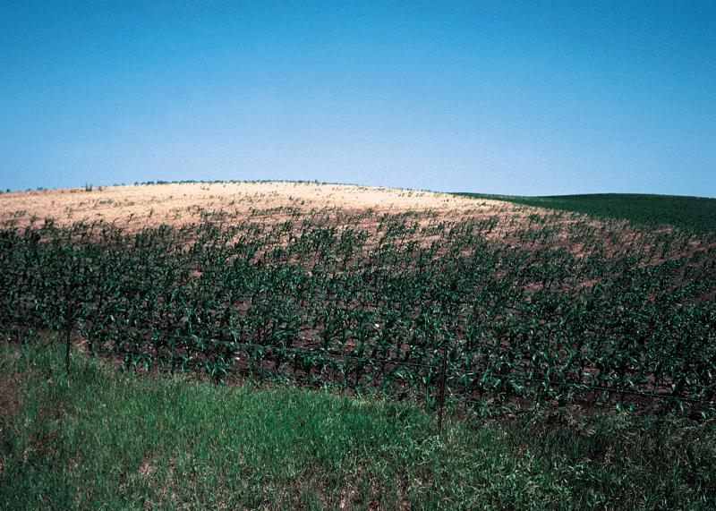 Soil horizons reviews soils and climate change gas for Soil 4 climate